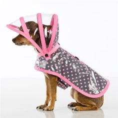Puddle Jumper Collection Dog Raincoat- Pink Polka Dots on Gray Big Dogs, Cute Dogs, Small Dogs, Dog Raincoat, Green Raincoat, Dog Clothes Patterns, Grey Dog, Golden Retriever, Pink Dog