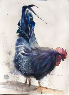 black rooster # 3 watercolor on paper 28*38 sm arches 300 @Olga Flerova