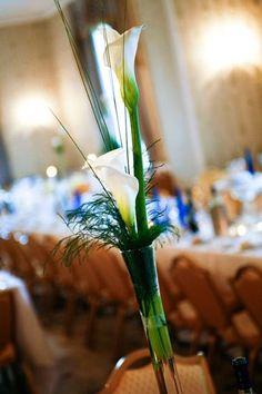 Middleton Park House Park House, Bridal Bouquets, Wedding Flowers, Wedding Venues, Plants, Wedding Reception Venues, Wedding Bouquets, Wedding Places, Plant