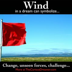 Wind in a dream can mean... More details at TheCuriousDreamer... #dreammeaning #dreamsymbols