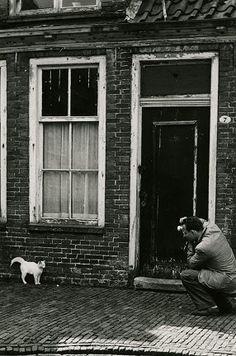 Willem Frederik Hermans fotografeert poes