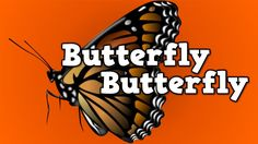 Most Popular Teaching Resources: Butterfly, Butterfly! (a song for kids about the b...