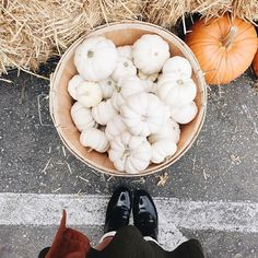 Halloween is right around the corner and we've been busy stacking up and carving up our pumpkins! #uohawaii #urbanoutfitters #uoonyou