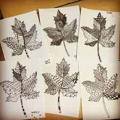 Line Art Leaves. Start with my PDF leaf template and finish with your own detailed patterns. These were done by 2nd graders.
