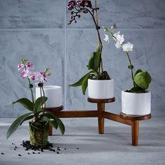 Mid-Century Turned Leg Tabletop Planter - Triple