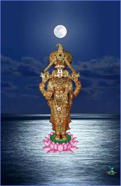 Lord Photo, Ganesh Photo, Hanuman Images, Hindu Statues, Bal Krishna, Lord Balaji, Lord Krishna Wallpapers, Lord Shiva Painting, Lord Murugan
