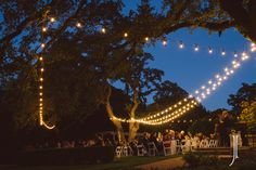 The Contemporary Austin - Laguna Gloria - Austin, Texas - Intelligent Lighting Design - Weddings & Special Event Lighting Design for Austin, Houston, & Dallas