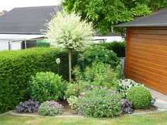 Your garden pictures, beds and design ideas - Summer 2015 - Page 14 - My beautiful garden forum www. In modern cities, it is almost impossible to stay in a very house with an outdoor, specially in the c. Terrace Garden, Herb Garden, Home And Garden, Most Beautiful Gardens, Amazing Gardens, Beautiful Beds, Garden Forum, Parts Of A Plant, Garden Pictures