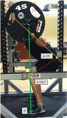 The Squat: Should Your Knees Travel Past the Toes? | Stone Athletic Medicine