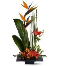 """Paradise Delight TFWEB386 Spiky, brilliantly colorful birds of paradise are a dramatic and long-lasting addition to any flower arrangement. With their beak-like appearance, these unique """"blooms"""" look like winged creatures poised for flight! Matched with fresh flowers, leaves and equisetum - and arranged into a striking presentation - they create a gift that's sure to impress."""