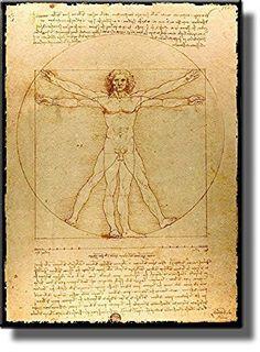 Leonardo Da Vinci's Vitruvian Man Picture on Stretched Canvas, Wall Art Decor, Ready to Hang!.