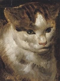 Jacob Jordaens Study of a Cat: DOMESTIC CAT HISTORY IN THE EARLY MODERN PERIOD