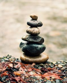 Rock piles for my gardens and wooded area!!