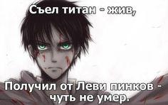 Stupid Memes, Funny Memes, Jokes, Anime Mems, Humor, Creepypasta, Attack On Titan, Wallpaper Quotes, Manga Anime