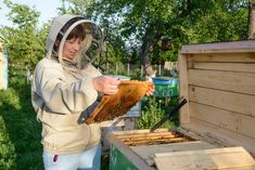 Backyard Beekeeping For Beginners (Part 1) Read More    Https://unitedfarmgirls