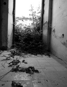 Lugar abandonado + flickr.com/eveen19