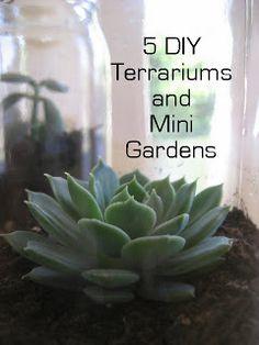 Bringing spring in- Terrariums and mini gardens