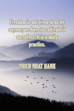 Freedom is not given to us by anyone; we have to cultivate it ourselves. It is a daily practice.  ❤︎ THICH NHAT HANH