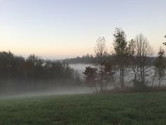 The fog was so beautiful this morning.  It made the grass look extra green.   #fog #morning #moon #farm #farmlife #picoftheday #kentucky #pictureoftheday #awesome #cool #best #bestoftheday #foggy #mornings #morningview #picofday #picsoftheday #beautiful #beauty #beautifulview #wakeup #wakeupnow #wakingup #photoaday #photooftheday #bestoftheweek #photoaday #grass #green #niceday