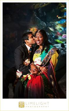 Limelight Photography, www.stepintothelimelight.com, Florida Aquarium, Tampa, Indian Wedding, sari, kiss, bride, groom, fish, red, yellow green