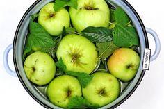 ВКУСНЫЕ СЕКРЕТЫ СЕМЬИ МИЗРАХ: моченные яблочки 🍎🍎🍏🍏🍎🍎🍏🍏 — ВКУСНЫЕ СЕКРЕТЫ СЕМЬИ МИЗРАХ Apple, Fruit, Food, Apple Fruit, Essen, Meals, Yemek, Apples, Eten