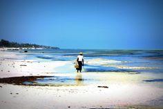 Looking for seaweed, Zanzibar