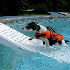 Skamper Pet Pool Escape Ramp / Incase your pet still struggles to come out of the pool, the next accessory you could have for him is this Skamper Pet Pool Escape Ramp.  http://thegadgetflow.com/portfolio/skamper-pet-pool-escape-ramp/ Above Ground Pool, In Ground Pools, Pet Life, Pet Supplies, Dog Pool Ramp, Pet Ramp, Doggie Pool, Doggie Bag, Outdoor Pool
