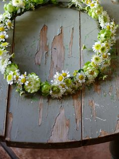 crown of feverfew