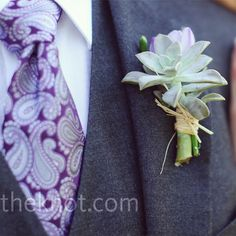Green Succulent Boutonniere and a purple paisley tie - stephen would be in heaven