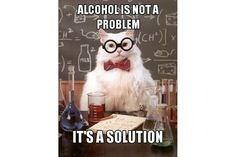 Chemistry Cat: Chemistry Cat: No Alcohol Problem