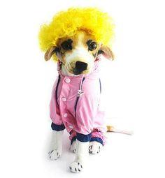 Cats Dog Pet Wigs Interesting Costumes Gift Wig Pet Costume https://backdroponline.com/collections/pet-wigs/products/cats-dog-pet-wigs-interesting-costumes-gift-wig-pet-costume