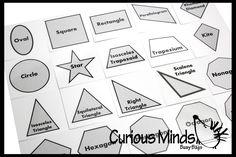 20 Geometric Shape Match with Matching Cards - Montessori 2 Part Card - Geometry Work - 2D Shape - Nomenclature