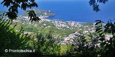 Il sentiero dell'Allume. Bellissima escursione lungo il sentiero Cai 502 Fango - Monte Cito - Maio