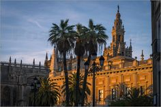 "#WallArt ""Seville Cathedral"" on #Posterlounge: online shop for #posters, #artprints, and #wall pictures. - Spain -"