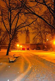 Beautiful Winter night in Belgrade, Serbia - Nature/Landscape Pictures Winter Szenen, Winter Magic, Winter Night, Snow Night, Beautiful World, Beautiful Places, Beautiful Pictures, Belgrade Serbia, Belle Villa