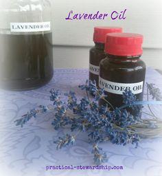 How to make Lavender Oil @ practical-stewardship.com