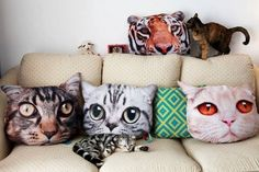 Presents? Yes! Gift items for your cat or a cat lover...pillows for real cat lovers! True Kitsch!