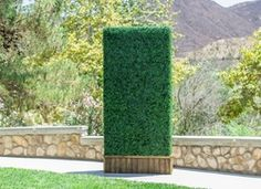 Custom Hedge perfect for rentals...having a party? Getting married? Let us know, we can help! Rent a boxwood privacy panel today!