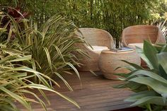 Modern City Garden in Melbourne, Australia.  Designer Dean Herald, Rolling Stone Landscapes who also provided the photograph. Source: Garden Design by Carolyn Mullet