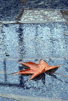 The puddles of life don't have to be messy; they can be cleansing.   Find out how in J Nell Browns novel, Autumn Rains  autumn rain images | Autumn Rain Royalty Free Stock Images - Image: 6912229