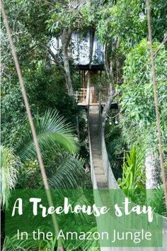 My treehouse stay 67ft up in the tree canopy in the Amazon jungle was one of the most unique hotel stays yet - read about my 3 day stay by clicking on the link...