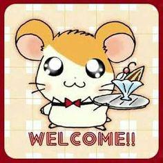 Hamtaro, Pokemon, Pikachu, Cute Hamsters, Anthro Furry, Storyboard, Cute Animals, Kawaii, Anime
