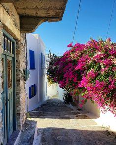 Amorgos Greek Beauty, Greek House, Flower Landscape, Bougainvillea, Instagram Ideas, Crete, Greek Islands, Beautiful World, Scenery