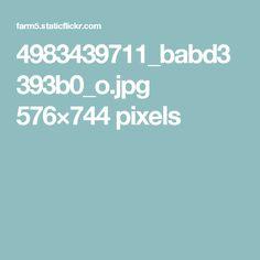 4983439711_babd3393b0_o.jpg 576×744 pixels