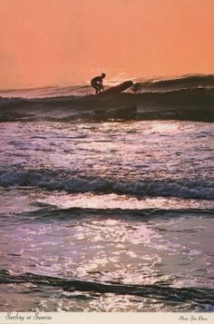 Surfing postcard. Hagins collection.