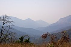"""The """"Blue Mountains"""" of the Western Ghats as seen form the Bangalore-Mangalore railway line at Donigal"""