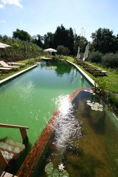 The glorious natural swimming pool at Il Paluffo, near Florence and Sienna, Italy