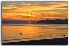 https://flic.kr/p/xVDoZf | Traveling | #Flickr #Foto #Photo #Fotografie #Photography #canon6d #Travel #Reisen #德國 #照片 #出差旅行 #Urlaub #Rügen #Binz #BalticSea #Ostsee #Beach #Sonnenuntergang #Mare #Meer #Strand #Natur #Nature
