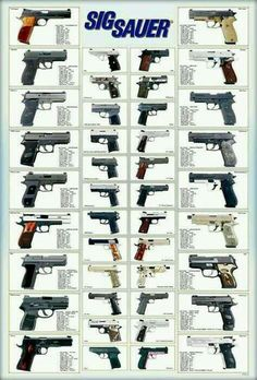 Sigs guide to handguns