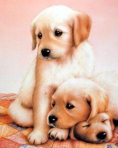 Cutest Three Puppies (Art)